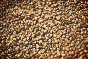 Wat zijn Robusta koffiebonen